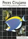 Peces cirujano, peces conejo y especies emparentadas